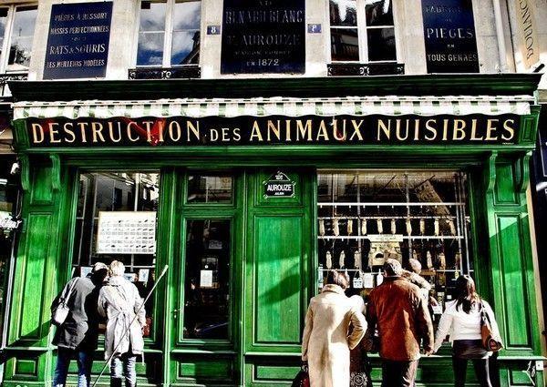 Paris insolite - 15 rue des halles 75001 paris ...